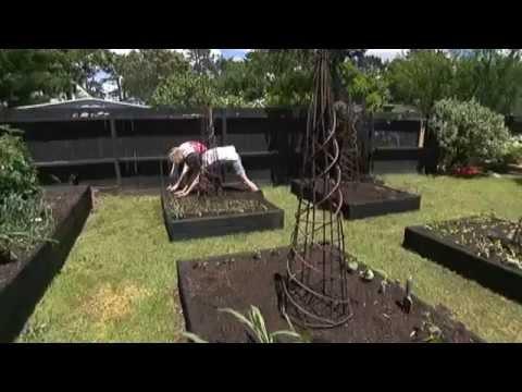 Огород без хлопот - работа в огороде ( 2 серия )