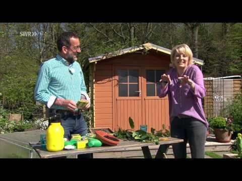Bienenfreundlicher Pflanzenschutz Im Garten, Teil 3