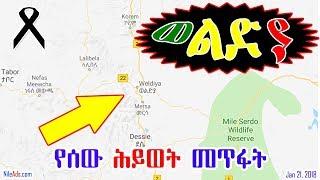Ethiopia: በወልድያ ሰው ሕይወት መጥፋት Weldiya, Ethiopia - VOA