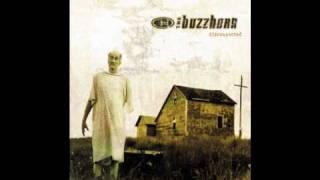 Watch Buzzhorn Carry Me Home video