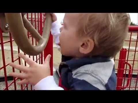 Landon (Vegan toddler!) 19 mths old at the park January 21, 2015