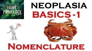 NEOPLASIA: BASICS-1: Nomenclature: Benign, Malignant, Mixed tumors, teratoma,Hamartoma, choristoma