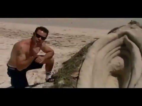 Chris Pontius - Sand Vagina