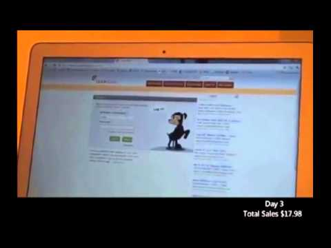 Work from home 2013 -- A legitimate work from home business case study