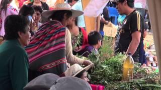 Feria de Plantas Medicinales, Cochabamba 2014