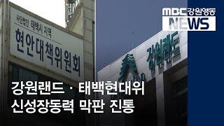 투R]강원랜드·태백현대위 신성장동력 막판 진통