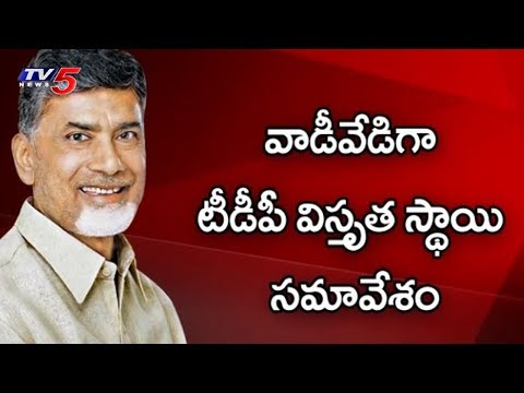 AP CM Chandrababu Serious Warning To TDP MLAs | AP Politics | TV5 News
