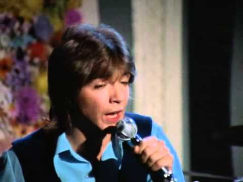 Partridge Family - One Night Stand