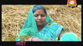HD New 2014 Hot Nagpuri Theth Songs    Janam Karam Palali Beta    Azad Ansari