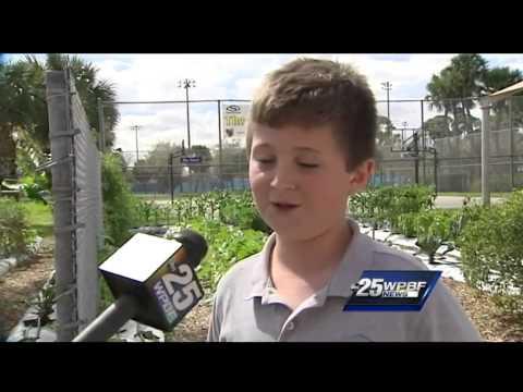 Cris' Weather School: The Weiss School