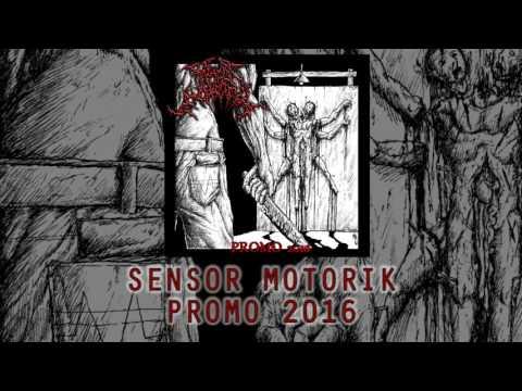 SENSOR MOTORIK PROMO 2016 (VIDEO TEASER)