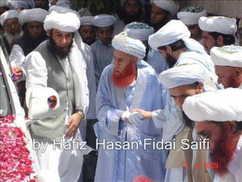 Allah Allah kareye--Saifi naat by Hafiz Hassan-Fidai Saifi