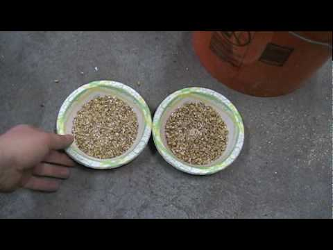 March 809 Pump Priming and Malt Conditioning/Wet Milling Video