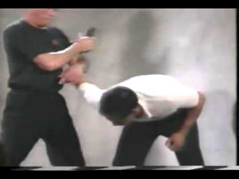 Bruce Lee's Fighting Method   Basic Training & Self Defense Techniques clip15 Image 1