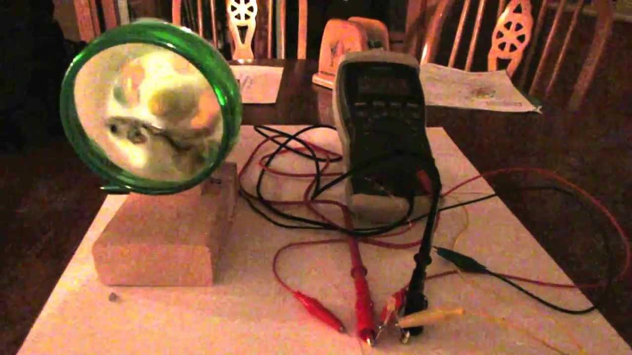 Hamster Wheel Power Hamster Powered Night Light