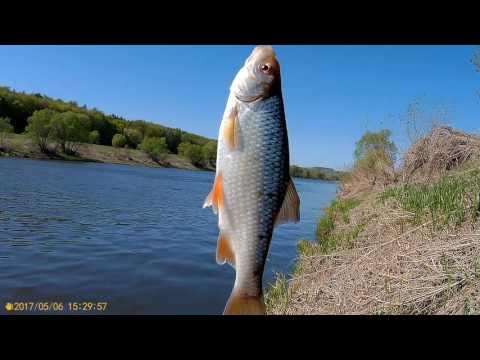 рыбалка летом на оке рязанская