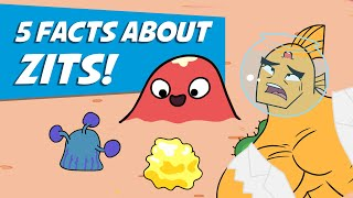 5 Facts About Zits