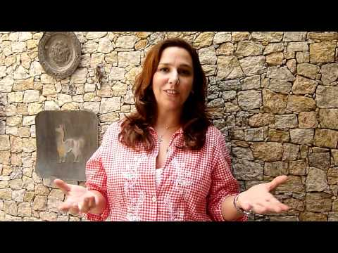 Depoimento de Renata Castro Barbosa para o III Festival Internacional de Cinema de Barra do Piraí