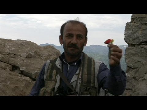 PKK fighters begin to withdraw from Turkey