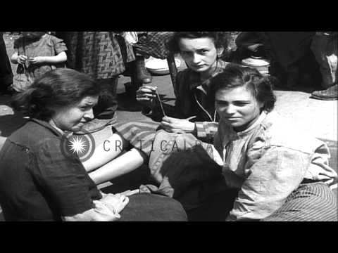 Arrested camp guards and liberated women prisoners at Nazi concentration camp in ...HD Stock Footage