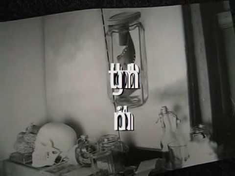 Ex Libris: Artist Talk by マイケル チャン