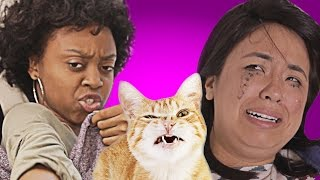 The Super Sad Death Of Beyoncé The Cat