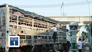 """TP.HCM, Đồng Nai """"bắt tay"""" kiểm soát nguồn thịt heo"""