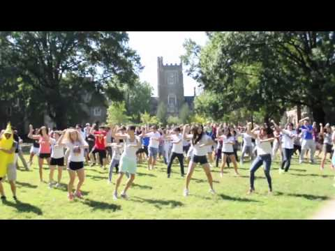 Duke University Gangnam Style Flash Mob