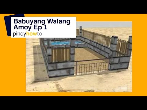 How to Raise Pigs: Baboyang walang amoy or Odorless Pigpen Episode 1