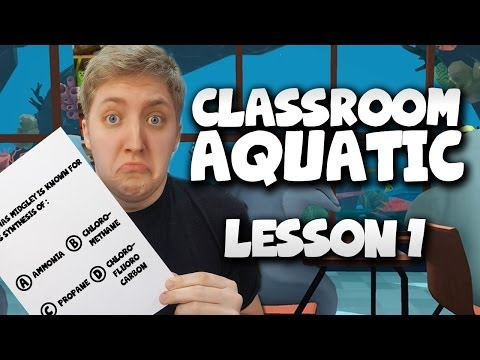 Classroom Aquatic: Mr Fin's Pop Quiz - Oculus Rift (lesson 1) video
