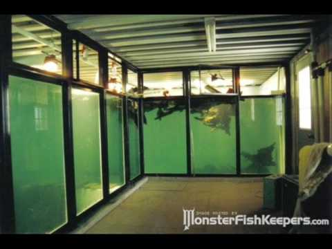 50000 + 15000 Gallon Monster Tanks - MonsterFishkeepers.com