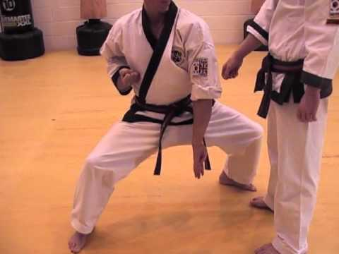 Tang Soo Do Basics Part 4 Image 1