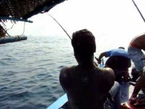 рыбалка на гоа северном