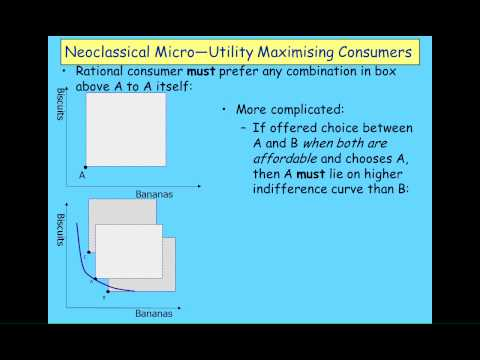 Keen Behavioural Finance 2011 Lecture01 Economic Behaviour Part 1