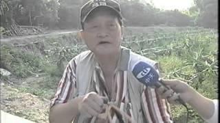 彈弓達人陳國榮 1