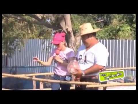 การเลี้ยงปลานิลหมันในกระชัง สร้างรายได้ ฟาร์มหมู่บ้านเห็ด