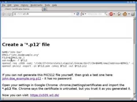 Client Certificate Login Demo