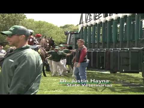 Racehorse Episode 6