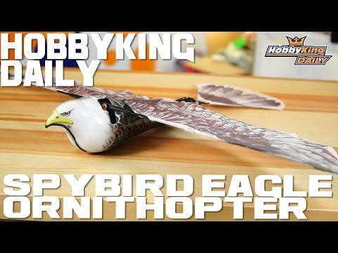 Spybird Eagle Ornithopter - HobbyKing Daily