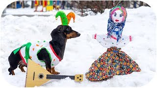 How DOG celebrate Russian Maslenitsa? Cute and funny animal video!