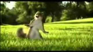 D:\video song\Comedi\Nestle_Kit_Kat_Ad.3gp