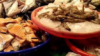 Chiayi  布袋魚港