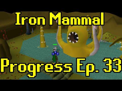 Oldschool Runescape - 2007 Iron Man Progress Ep. 33 | Iron Mammal