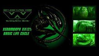 Weyland-Yutani Notes on Xenomorph XX121's Basic Life Cycle