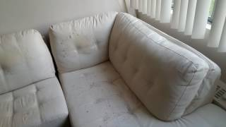 Sofa Warranty - Yes or No?