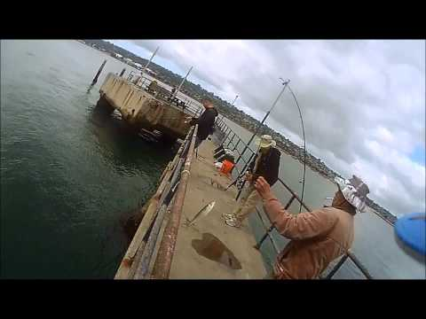 SAN DIEGO FISHING: FEBRUARY FISHING WEEK 2