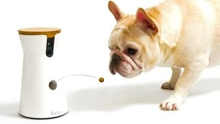 5 Amazing Pet Gadgets You MUST HAVE! ▶3