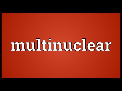 Header of multinuclear