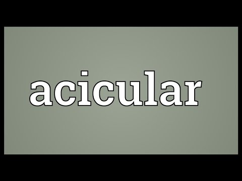 Header of acicular