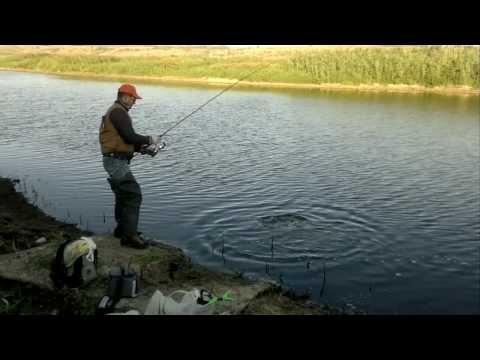 рыбалка на ставке перемога